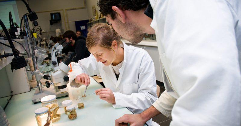 Les laboratoires de recherche univ la rochelle