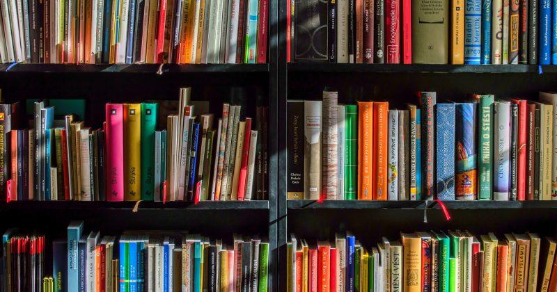 publications scientifiques_univ la rochelle