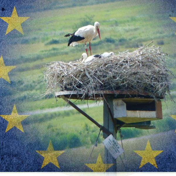 Colloque sur l'intégration nationale du droit européen de l'environnement au 21e siècle
