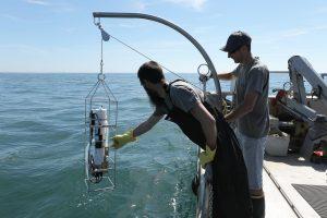 Filière Environnement, Gestion du littoral