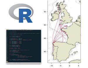 Informatique - Web - Images - Télécommunications 5