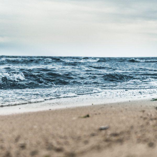 Journée Mondiale de l'Océan à La Rochelle