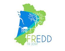 FREDD