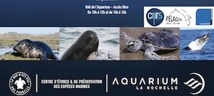Plaquette Aquarium La Rochelle